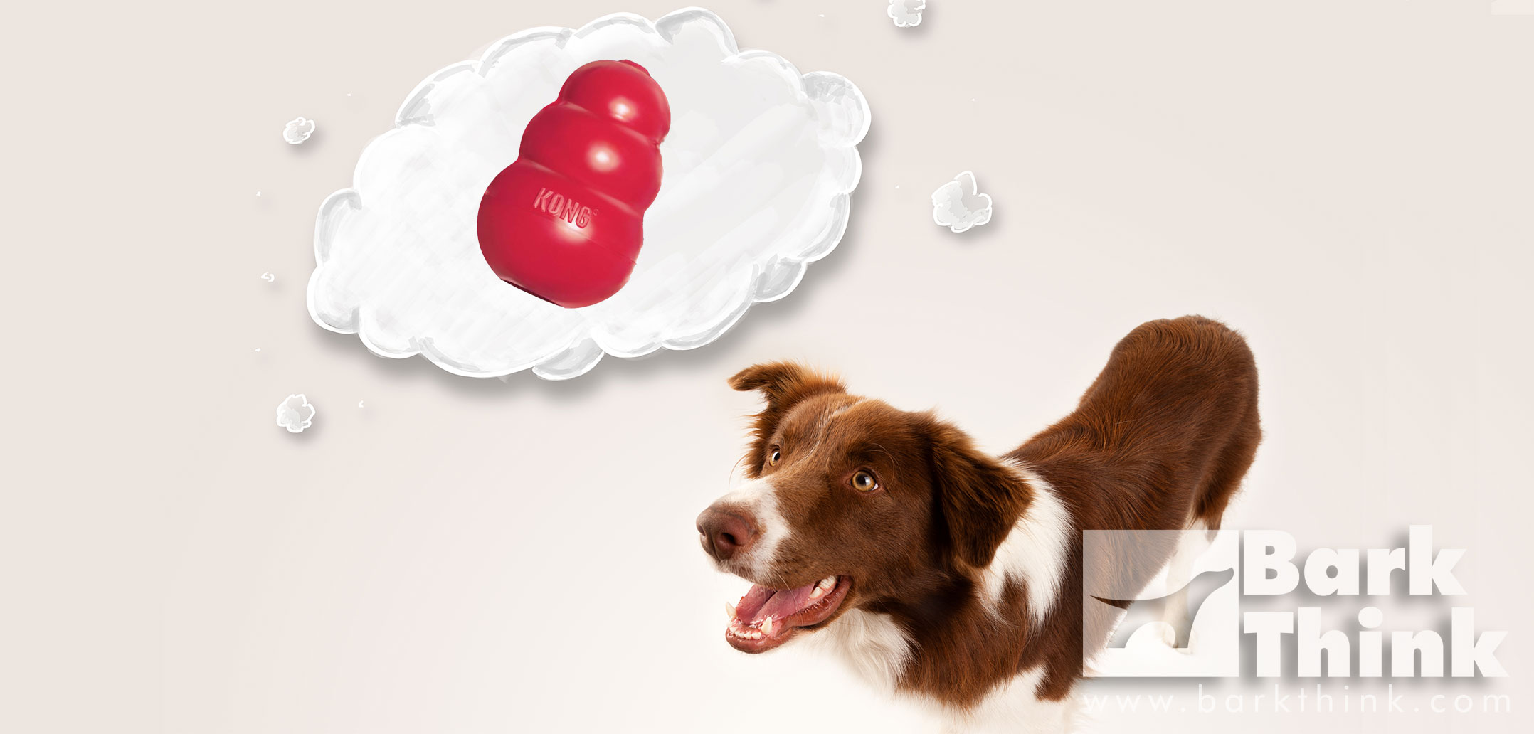 Get Stuffed Over 50 Ways to Fill Your Kong Bark Think