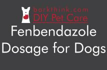 Fenbendazole Dewormer Dosage for Dogs